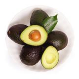 【悠汇园】墨西哥牛油果6个 水果新鲜 鳄梨牛油果水果批发